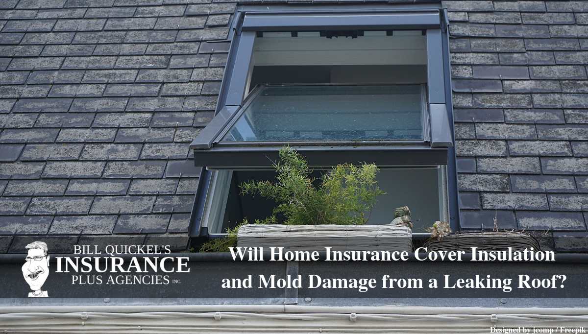 Will Home Insurance Cover Insulation And Mold Damage From A